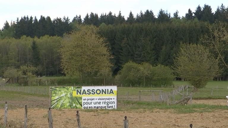 Le gouvernement wallon adopte Nassonia-bis sur Saint-Hubert