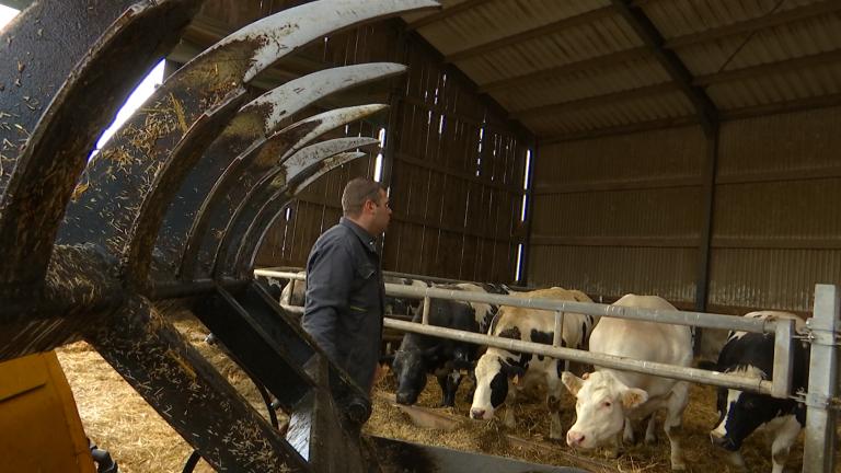 """""""En direct de mon élevage"""", nouvelle coopérative agricole"""