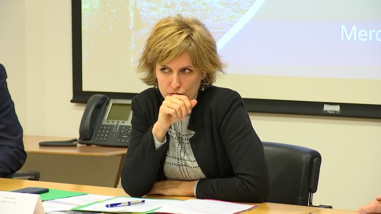 PPA : la ministre Tellier prolonge l'interdiction de circulation en forêt