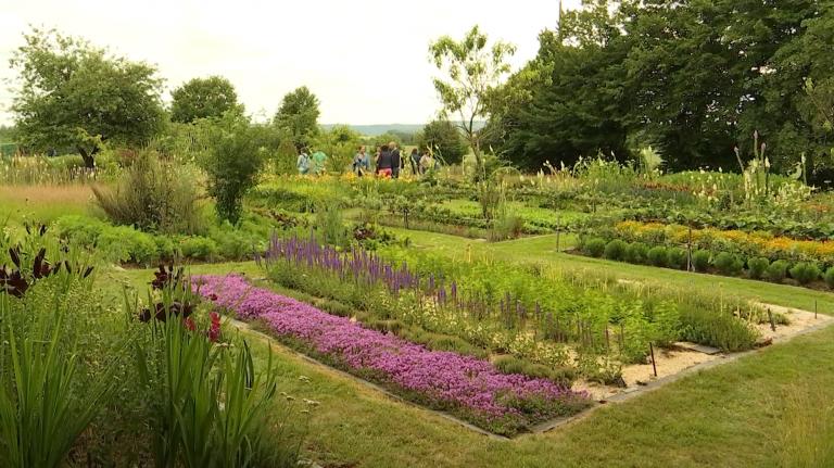 """""""Le Bouillon Blanc"""", un jardin naturel aux mille et une merveilles"""