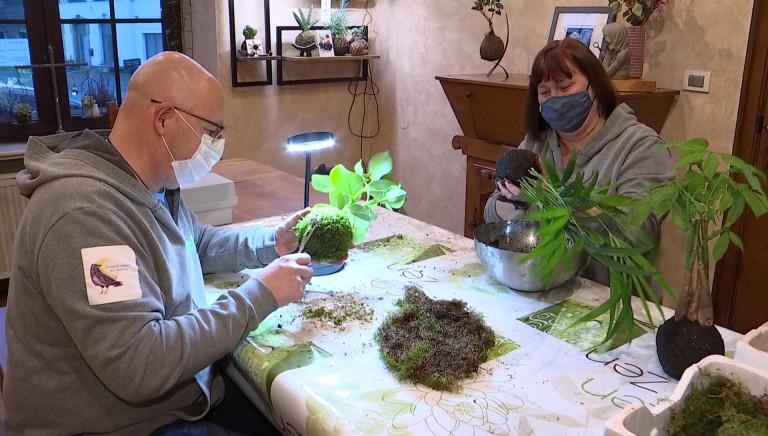 Découvrez le Kokedama: un art floral japonais mis à la sauce gaumaise par Murielle et Daniel