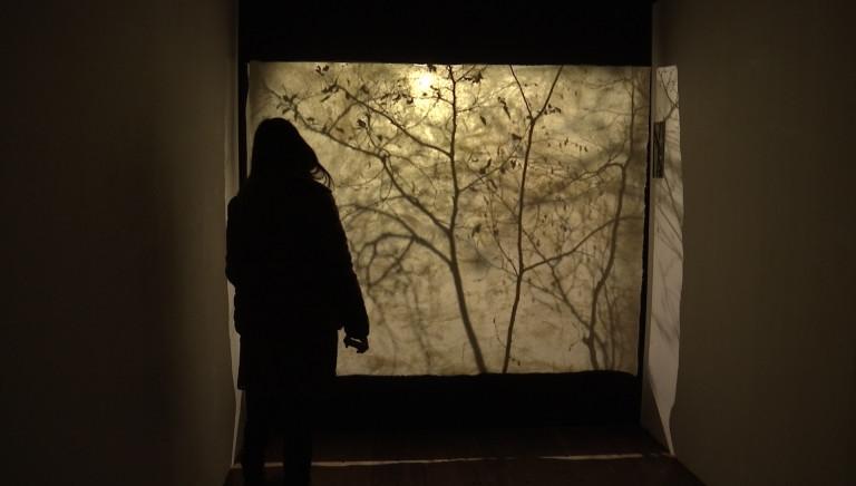 Exposition du Prix du Luxembourg : Elise Claudot, lauréate 2020