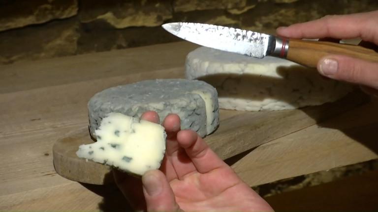 Prouvy : le bleu de brebis et le crottin de chèvre, meilleurs fromages au lait cru