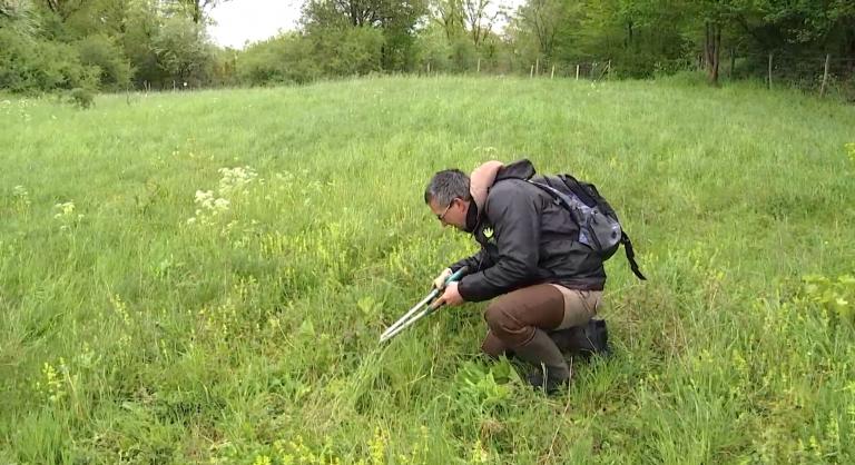 Des volontaires au service de la biodiversité dans les réserves naturelles