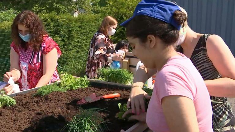 Stockem : un jardin, véritable outil pédagogique à l' Ecole d'enseignement spécialisé