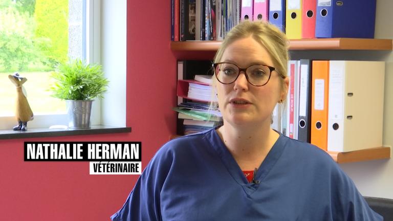 La clinique vétérinaire de Libramont, un système de garde 24H/24