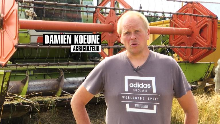 La ferme Koeune à Houffalize, entre tourisme et maraîchage